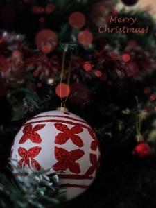 Christmas Cards [decoration photos]